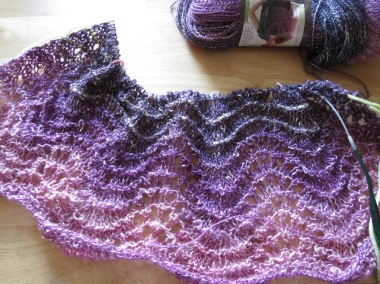 Feather and Fan Shawl